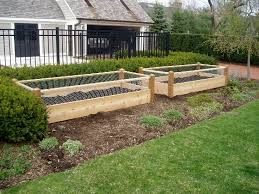 Greenes Fence Raised Garden Bed by Valuable Design Raised Garden Bed With Fence Imposing Ideas