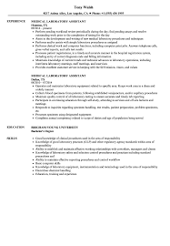 Medical Laboratory Assistant Resume Samples   Velvet Jobs Sample Resume Labatory Supervisor Awesome Stock For Lab Technician Skills Examples At Objective Research Associate Assistant Writing Guide 20 Science For Job The Molecular Biologist Samples Velvet Jobs Revised Biology 9680 Drosophilaspeciionpatternscom Chemistry 98 Microbiology Graduate