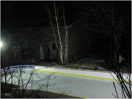 Backyards: Awesome Backyard Rink Liners. Backyard Images. Backyard ...