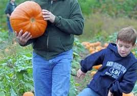 Pumpkin Patch Pittsburgh Area by On Gorgeous October Days Hayrides Offer Great Family Fun