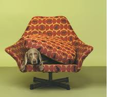 Crypton Super Fabric Sofa by 103 Best Crypton Fabric Images On Pinterest Dog Beds Stains And