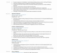 Production Line Leader Resume Sample Beautiful Web Project Manager Page Entry Level Management