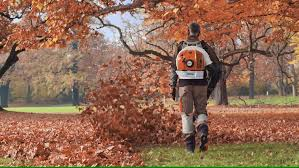 The STIHL Backpack Blower BR 700