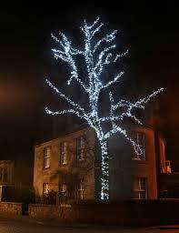 outdoor tree lights large foot light fia uimp
