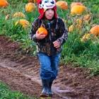 Kent Farms Pumpkin Patch by Kent Farms Andover Ny