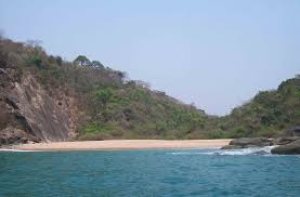 100 Butterfly Beach Goa Natures Undiscovered Treasure Trove Es