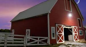 barn lights – wizbabiesub