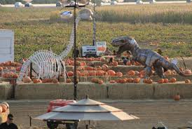 Best Pumpkin Patch Near Roseville Ca by 4 Local Halloween Attractions To Haunt Up Some Fun U2013 The State Hornet