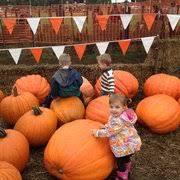 Puyallup Pumpkin Patch by Spooner Farms 37 Photos U0026 31 Reviews Farms 9710 State Rte