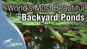 World's Most Beautiful Backyard Ponds - YouTube Beyonc Shares Stunning Behindthescenes Photos From Her Grammys Aquascape For A Traditional Landscape With Pittsford Ny And Aquascape Patio Ponds Uk 100 Images Pond Superb Pond Build In Dingtown Pa Ce Pontz Sons Contractors The Ultimate Backyard Oasis Inc Choosing The Perfect Water Feature Your Yard Features Aquarium Beautify Home With Unique Designs Certified Waterpaw Patio D R Excavating Landscaping Ponds Waterfalls Waters Edge Aquascaping Waterfalls Accsories