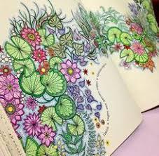 Jardim Secreto Secret Garden Coloring BookAdult