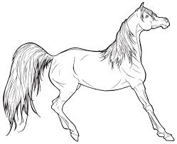 Arabian Horse Coloring Pages Realistic