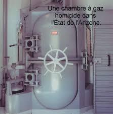 le problème des chambres à gaz chambres à gaz zyklon b vincent reynouard