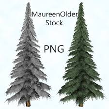 Christmas Tree Types by Stock Png Fir Tree By Maureenolder On Deviantart