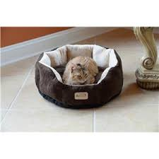Armarkat Cat Bed by Cat Beds U0026 Carriers