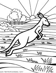 Free Wild Animal AZ Kangaroo Coloring Pages