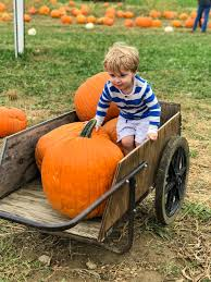 Pumpkin Patch Pittsburgh 2015 by Weekend Snapshots Another Weekend Another Pumpkin Patch How