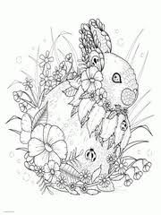Download Free Rabbit Coloring Pages Adult Animal Colouring Book