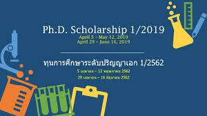 100 Ph Of 1 209 D Scholarship BiotechKMUTT