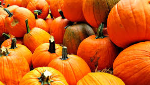 Pumpkin Patch Frederick County Md by The Complete Guide To The Best Fall Festivals In Maryland