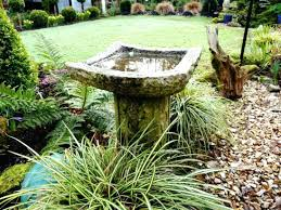 Solar Powered Bird Bath Water Fountains Solar Powered Bird Bath ... Outdoor Fountains At Lowes Pictures With Charming Backyard Expert Water Gardening Pond Pump Filter Solutions For Clear Backyards Mesmerizing For Water Fountain Garden Pumps Total Pond 70 Gph Pumpmd11060 The Home Depot Large Yard Outside Fountain Have Also Turned An Antique Into A Diy Bubble Feature Ceramic Sphere Pot Sunnydaze Solar Pump And Panel Kit 80 Head Medium Oput 1224v 360 Myers Well Youtube