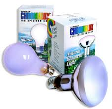 spectrum light bulb 75 watt