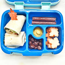 How To Build A Healthy Kids Lunchbox Isshereally Ginaekirk