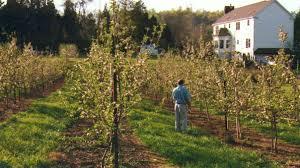 Pumpkin Picking Nj by Home Longmeadow Farm Nj