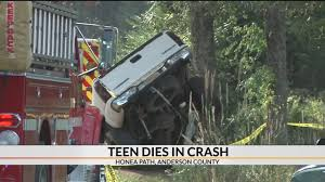100 Chicken Truck John Anderson 1 Dead After Truck Crashes Into Tree In Co