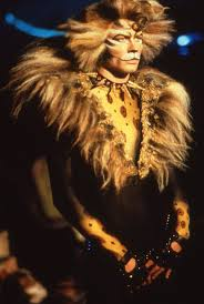 cats on broadway 153 best cats rum tum tugger images on room daniel