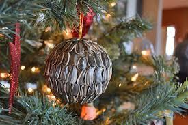 Diy Christmas Ornament Natural Seeds