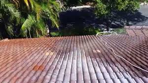 no pressure chemical tile roof cleaning palm gardens 561 601