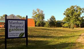 of the Week Hiking the Trails at Matthaei Botanical Gardens