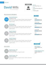 Graphic Design Resume Examples 2014 And Professional Template To Create Cool For Retail 454