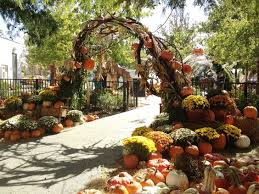 Carmichael Pumpkin Patch Tulsa Ok by Happy Day Farms Pumpkin Patch In Terral Oklahoma Is Much More