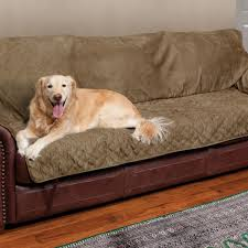 Snoozer Overstuffed Sofa Pet Bed by Sofa Covers For Pets To Protect Furniture