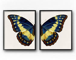 Blue Butterfly Wall Art Print Set Of 2 Downloadable Prints