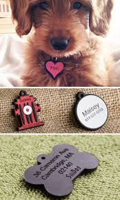 Arlee Home Fashions Dog Bed by 38 Best Pup A Lup Images On Pinterest Animals Dog Stuff And Dog