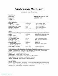 Resume Objective Examples For A Welder Awesome Format Luxury Special Skills Acting