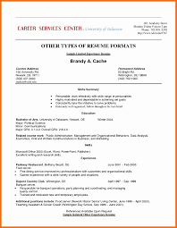 Volunteer Resume Summary Examples Awesome Experience Sample Unique
