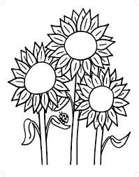 Simple Sunflower Coloring Pages 7073097