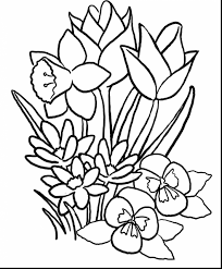 Outstanding Spring Flower Coloring Pages With Flowers And Printable