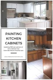 insl x cabinet coat colors 61 best home renovation projects images on kitchen