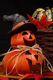 Myers Pumpkin Patch Greeneville by 1229 Best Décorations D U0027halloween Images On Pinterest Halloween