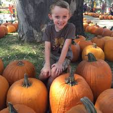 Pumpkin Patch San Jose 2015 by Nyfotography Booth At The Pumpkin Patch For Great Fall Pumpkin