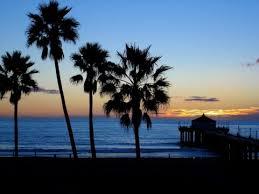California Beaches Palm Trees Beach