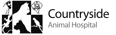 countryside animal hospital countryside animal hospital veterinarian in sylvania oh usa home