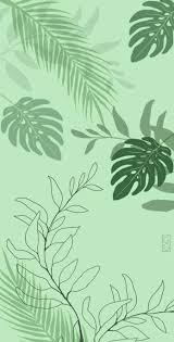 wallpaper planta