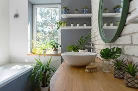 5 grüne zimmerpflanzen fürs badezimmer die stilvolle