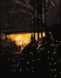String Lights For Patio by Tips For Decorating Bushes With Christmas Lights Home Guides
